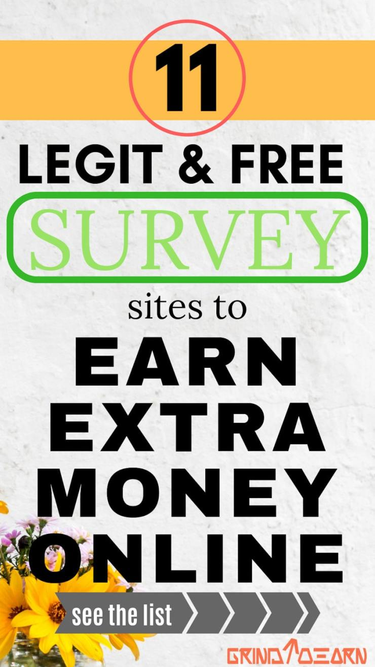 Learn how to make extra money online with these best & free paid survey sites from the comfort of your home during your downtime.Individuals from US,Uk & Canada have higher earning potential with these 11 sites. See the full list..... #survey#without investment#easy